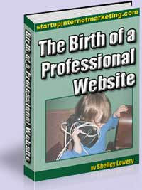 The Birth of a Professional Website